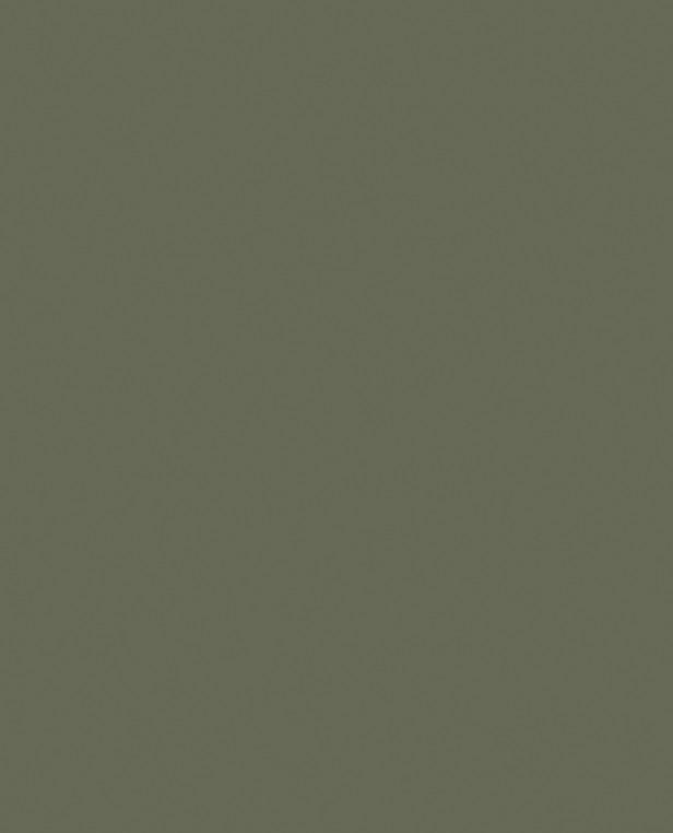 NFM Tarnfarbe EC Paint OD